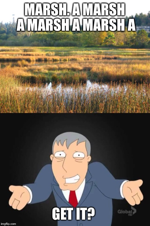 Bit of a thinker  | MARSH. A MARSH A MARSH A MARSH A GET IT? | image tagged in memes,apesfollowkoba | made w/ Imgflip meme maker