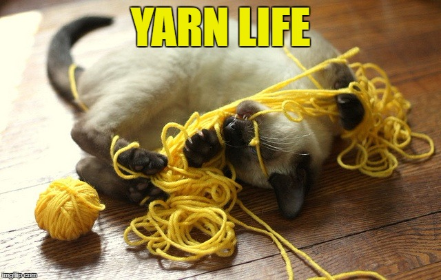 YARN LIFE | made w/ Imgflip meme maker