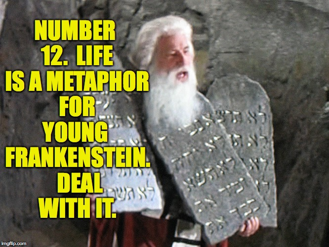 NUMBER 12.  LIFE IS A METAPHOR FOR YOUNG FRANKENSTEIN.  DEAL WITH IT. | made w/ Imgflip meme maker