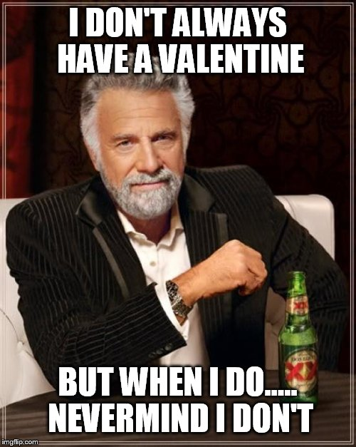 The Most Interesting Man In The World Meme | I DON'T ALWAYS HAVE A VALENTINE BUT WHEN I DO..... NEVERMIND I DON'T | image tagged in memes,the most interesting man in the world | made w/ Imgflip meme maker