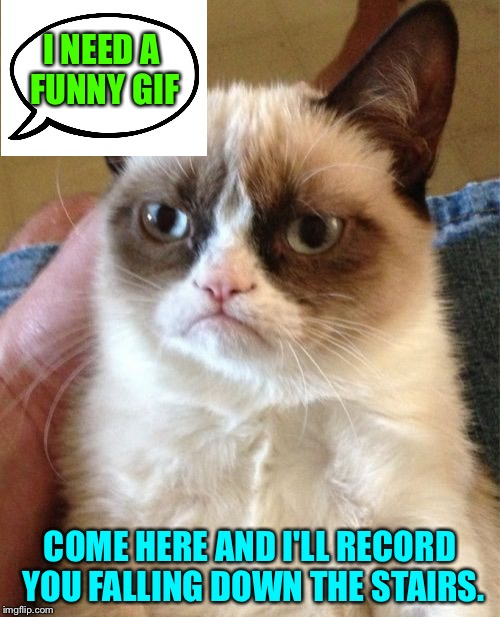 Grumpy the director. | I NEED A FUNNY GIF COME HERE AND I'LL RECORD YOU FALLING DOWN THE STAIRS. | image tagged in memes,grumpy cat,funny | made w/ Imgflip meme maker