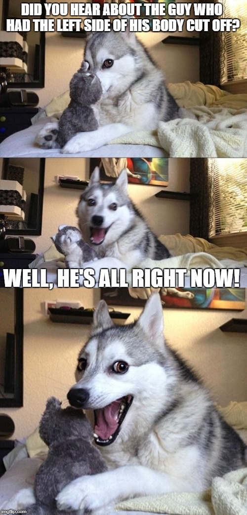 Bad Joke Dog | DID YOU HEAR ABOUT THE GUY WHO HAD THE LEFT SIDE OF HIS BODY CUT OFF? WELL, HE'S ALL RIGHT NOW! | image tagged in bad joke dog | made w/ Imgflip meme maker