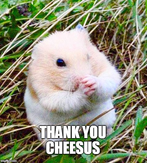 THANK YOU CHEESUS | made w/ Imgflip meme maker