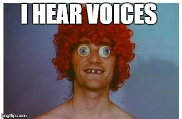 I HEAR VOICES | made w/ Imgflip meme maker