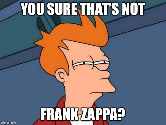 Futurama Fry Meme | YOU SURE THAT'S NOT FRANK ZAPPA? | image tagged in memes,futurama fry | made w/ Imgflip meme maker