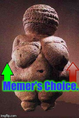 Memer's Choice. | made w/ Imgflip meme maker