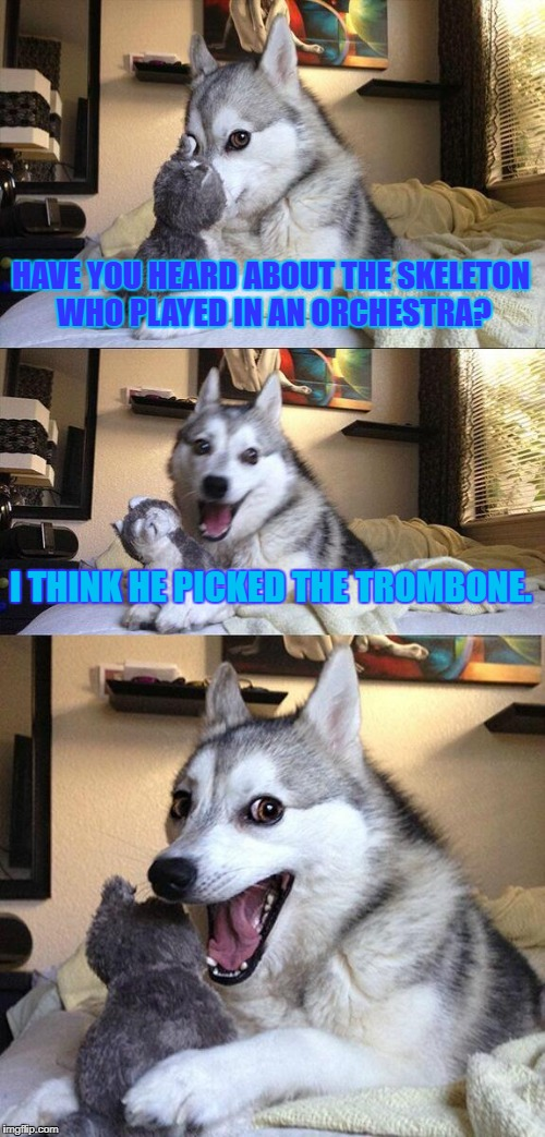 Bad Pun Dog Meme | HAVE YOU HEARD ABOUT THE SKELETON WHO PLAYED IN AN ORCHESTRA? I THINK HE PICKED THE TROMBONE. | image tagged in memes,bad pun dog | made w/ Imgflip meme maker