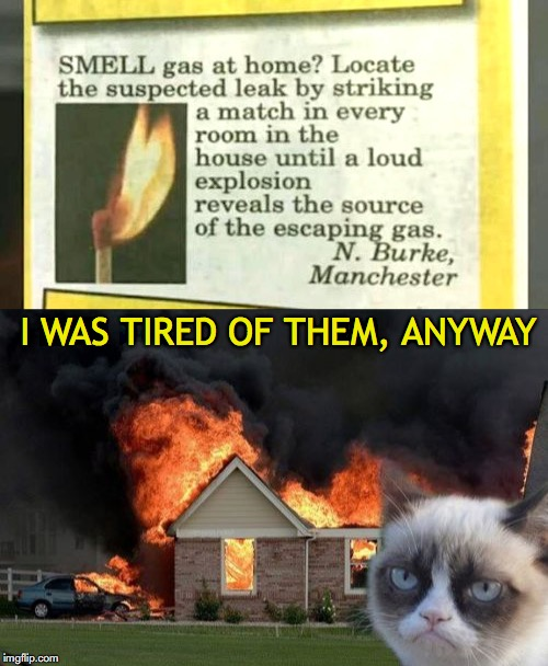 I WAS TIRED OF THEM, ANYWAY | image tagged in grumpy cat,burn kitty,leaks | made w/ Imgflip meme maker