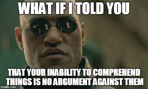 Matrix Morpheus Meme | WHAT IF I TOLD YOU THAT YOUR INABILITY TO COMPREHEND THINGS IS NO ARGUMENT AGAINST THEM | image tagged in memes,matrix morpheus | made w/ Imgflip meme maker