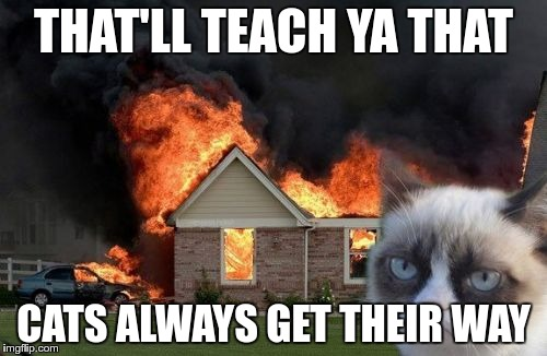 Burn Kitty Meme | THAT'LL TEACH YA THAT CATS ALWAYS GET THEIR WAY | image tagged in memes,burn kitty,grumpy cat | made w/ Imgflip meme maker