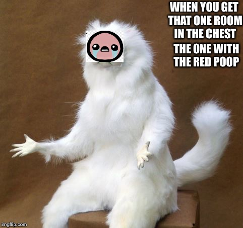 Persian white monkey |  WHEN YOU GET THAT ONE ROOM IN THE CHEST; THE ONE WITH THE RED POOP | image tagged in persian white monkey | made w/ Imgflip meme maker