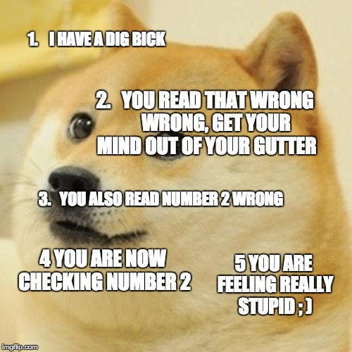 Doge | 1.    I HAVE A DIG BICK 2.   YOU READ THAT WRONG      WRONG, GET YOUR MIND OUT OF YOUR GUTTER 3.   YOU ALSO READ NUMBER 2 WRONG 4 YOU ARE NO | image tagged in memes,doge | made w/ Imgflip meme maker