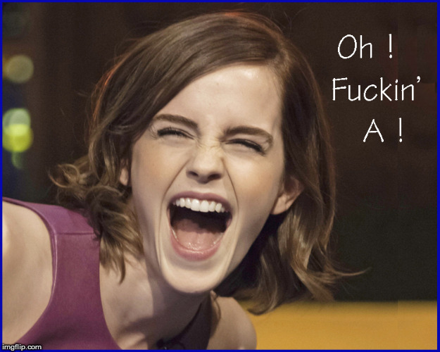 Sometime you just have to say---F*ckin'- A | image tagged in are you fucking kidding me,emma watson,babes,lol,funny memes,hilarious | made w/ Imgflip meme maker