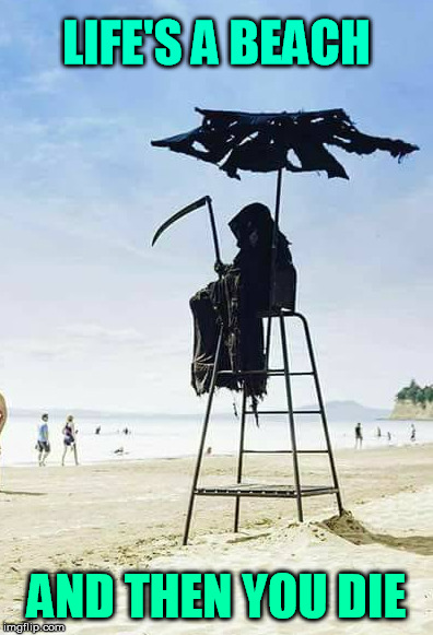 This beach looks dead today | LIFE'S A BEACH AND THEN YOU DIE | image tagged in life,reaper,puns,meme | made w/ Imgflip meme maker