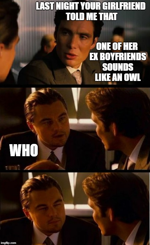 LAST NIGHT YOUR GIRLFRIEND TOLD ME THAT ONE OF HER EX BOYFRIENDS SOUNDS LIKE AN OWL WHO | image tagged in inception remix,memes,funny memes,inception | made w/ Imgflip meme maker
