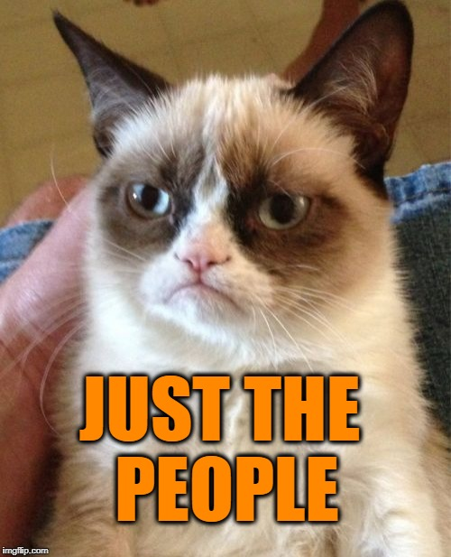 Grumpy Cat Meme | JUST THE PEOPLE | image tagged in memes,grumpy cat | made w/ Imgflip meme maker