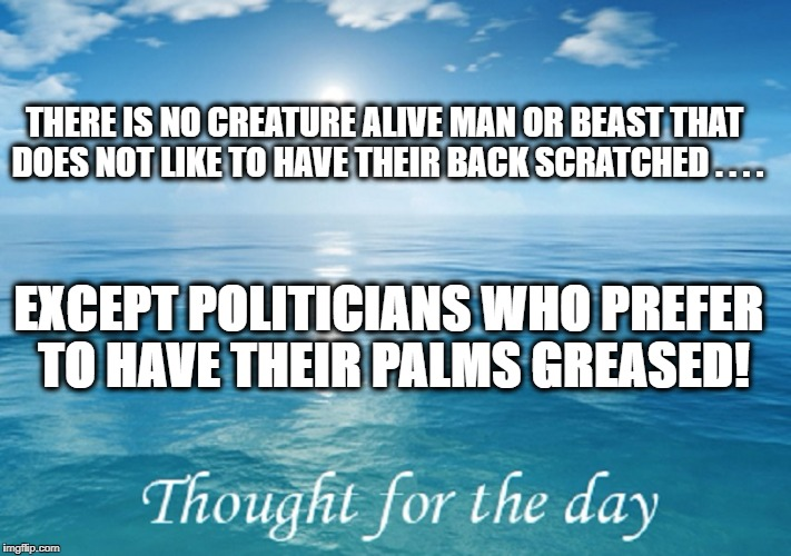 POLITICIANS...THE LOWEST FORM OF LIFE | THERE IS NO CREATURE ALIVE MAN OR BEAST THAT DOES NOT LIKE TO HAVE THEIR BACK SCRATCHED . . . . EXCEPT POLITICIANS WHO PREFER TO HAVE THEIR  | image tagged in politics,political meme,political,meme | made w/ Imgflip meme maker