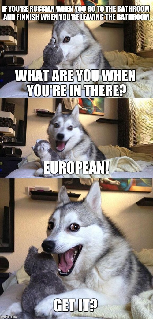 Bad Pun Dog Meme | IF YOU'RE RUSSIAN WHEN YOU GO TO THE BATHROOM AND FINNISH WHEN YOU'RE LEAVING THE BATHROOM WHAT ARE YOU WHEN YOU'RE IN THERE? EUROPEAN! GET  | image tagged in memes,bad pun dog | made w/ Imgflip meme maker