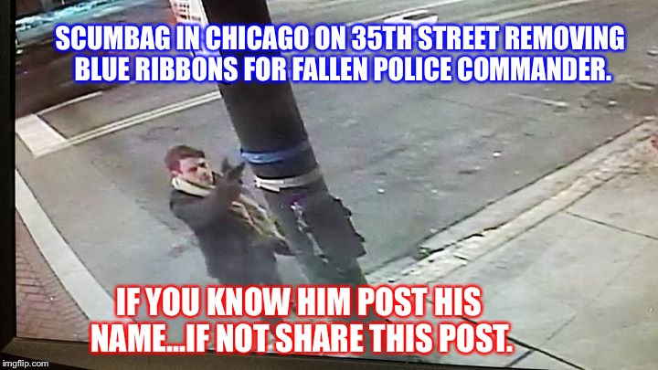 Scumbag | SCUMBAG IN CHICAGO ON 35TH STREET REMOVING BLUE RIBBONS FOR FALLEN POLICE COMMANDER. IF YOU KNOW HIM POST HIS NAME...IF NOT SHARE THIS POST. | image tagged in scumbag | made w/ Imgflip meme maker