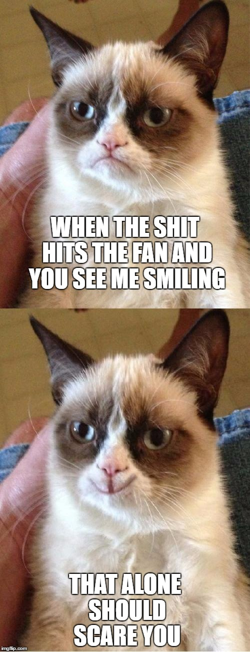 Grumpy Cat 2x Smile | WHEN THE SHIT HITS THE FAN AND YOU SEE ME SMILING THAT ALONE SHOULD SCARE YOU | image tagged in grumpy cat 2x smile,random,grumpy cat | made w/ Imgflip meme maker