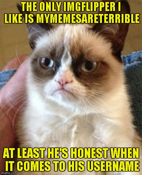 Grumpy Cat Meme | THE ONLY IMGFLIPPER I LIKE IS MYMEMESARETERRIBLE AT LEAST HE'S HONEST WHEN IT COMES TO HIS USERNAME | image tagged in memes,grumpy cat,mymemesareterrible,powermetalhead,funny,top users | made w/ Imgflip meme maker