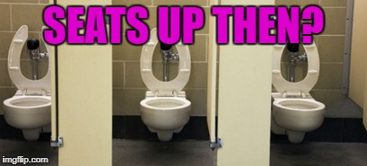 bathroom | SEATS UP THEN? | image tagged in bathroom | made w/ Imgflip meme maker