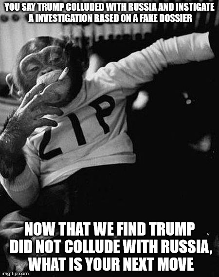 YOU SAY TRUMP COLLUDED WITH RUSSIA AND INSTIGATE A INVESTIGATION BASED ON A FAKE DOSSIER NOW THAT WE FIND TRUMP DID NOT COLLUDE WITH RUSSIA, | image tagged in zip the smoking chimp | made w/ Imgflip meme maker