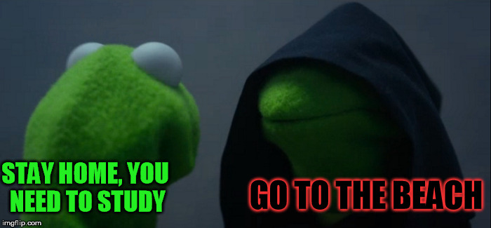 Evil Kermit Meme | STAY HOME, YOU NEED TO STUDY GO TO THE BEACH | image tagged in memes,evil kermit | made w/ Imgflip meme maker