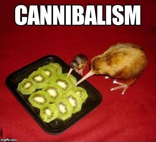 image tagged in kiwi,cannibal,birds,fruit,memes,one does not simply | made w/ Imgflip meme maker