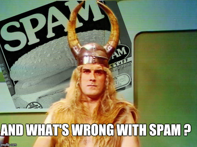 Spam , spam , spam . . . | AND WHAT'S WRONG WITH SPAM ? | image tagged in spam | made w/ Imgflip meme maker