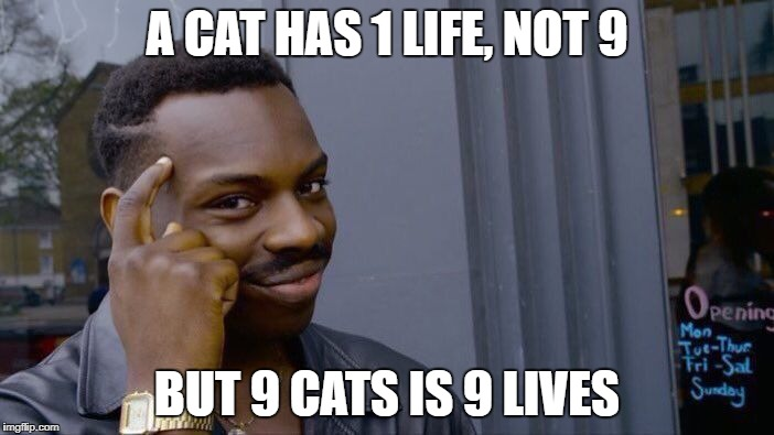 Roll Safe Think About It Meme | A CAT HAS 1 LIFE, NOT 9 BUT 9 CATS IS 9 LIVES | image tagged in memes,roll safe think about it | made w/ Imgflip meme maker
