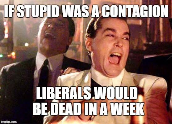 Wiseguys | IF STUPID WAS A CONTAGION LIBERALS WOULD BE DEAD IN A WEEK | image tagged in wiseguys | made w/ Imgflip meme maker