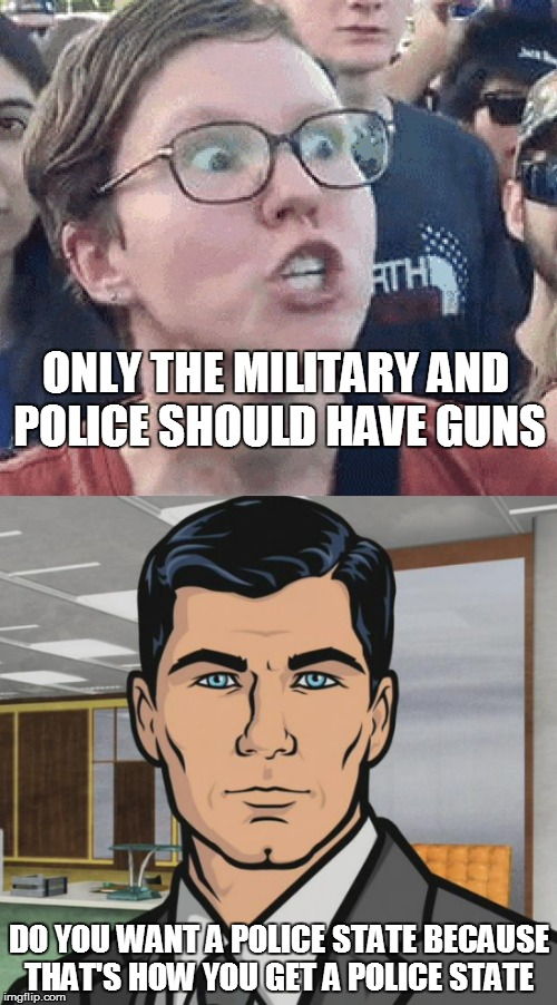 ONLY THE MILITARY AND POLICE SHOULD HAVE GUNS DO YOU WANT A POLICE STATE BECAUSE THAT'S HOW YOU GET A POLICE STATE | image tagged in triggered liberal,do you want archer | made w/ Imgflip meme maker