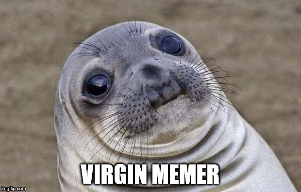 Awkward Moment Sealion Meme | VIRGIN MEMER | image tagged in memes,awkward moment sealion | made w/ Imgflip meme maker