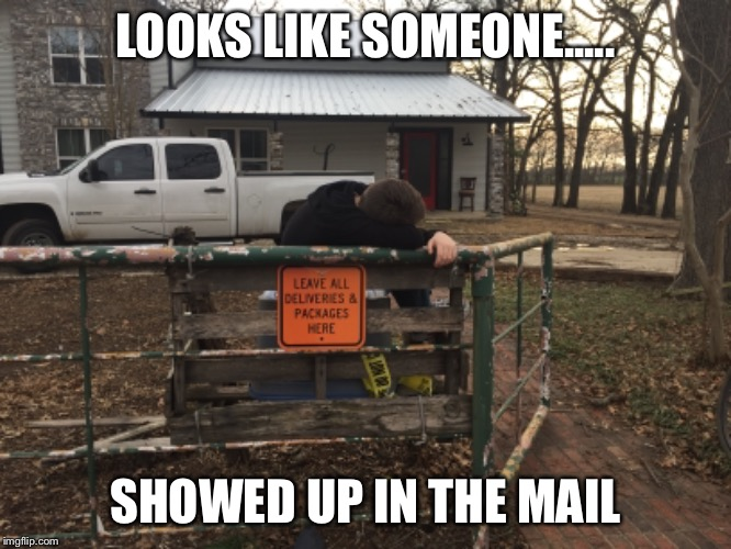 LOOKS LIKE SOMEONE..... SHOWED UP IN THE MAIL | image tagged in memes | made w/ Imgflip meme maker