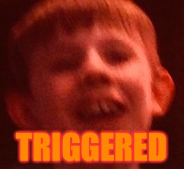 Heres a new template (Triggered Kiddo) | TRIGGERED | image tagged in triggered kiddo,memes,dank,new template,triggered template,funny | made w/ Imgflip meme maker