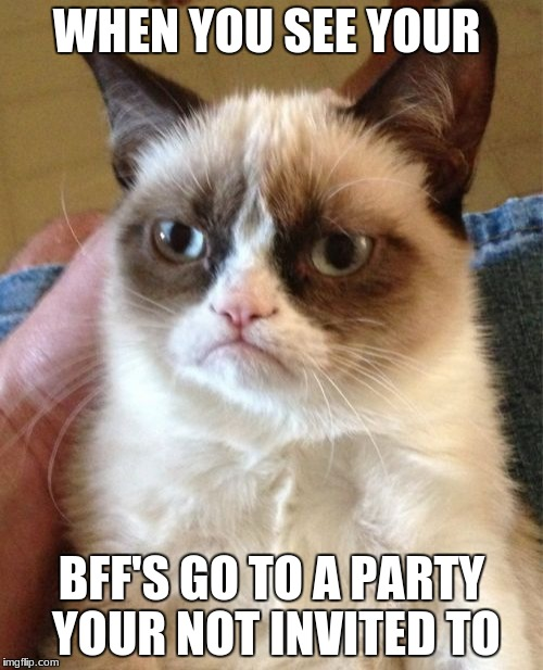 Grumpy Cat Meme | WHEN YOU SEE YOUR BFF'S GO TO A PARTY YOUR NOT INVITED TO | image tagged in memes,grumpy cat | made w/ Imgflip meme maker