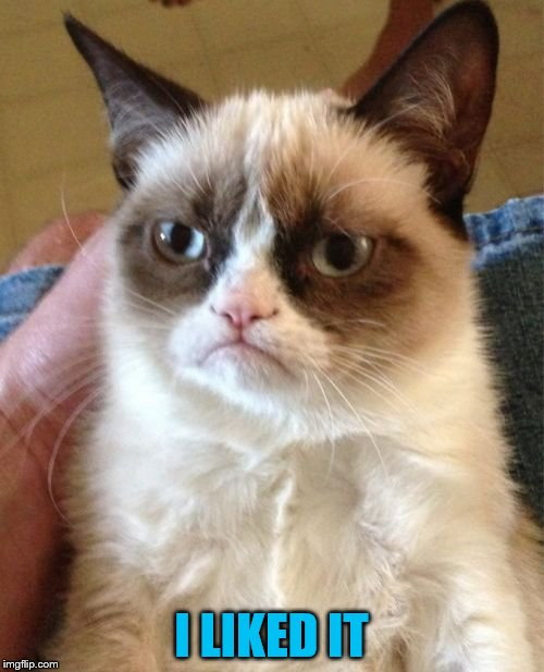 Grumpy Cat Meme | I LIKED IT | image tagged in memes,grumpy cat | made w/ Imgflip meme maker