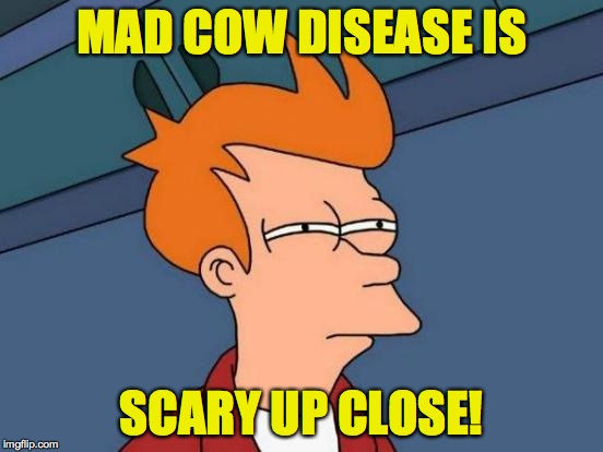 Futurama Fry Meme | MAD COW DISEASE IS SCARY UP CLOSE! | image tagged in memes,futurama fry | made w/ Imgflip meme maker