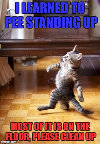 Cool Cat Stroll Meme | I LEARNED TO PEE STANDING UP MOST OF IT IS ON THE FLOOR, PLEASE CLEAN UP | image tagged in memes,cool cat stroll | made w/ Imgflip meme maker