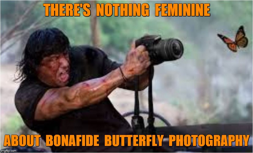 THERE'S  NOTHING  FEMININE ABOUT  BONAFIDE  BUTTERFLY  PHOTOGRAPHY | made w/ Imgflip meme maker