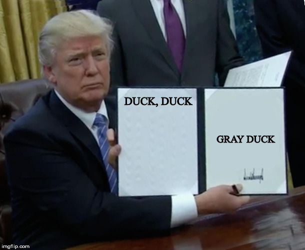 Duck, Duck Gray Duck | DUCK, DUCK GRAY DUCK | image tagged in president trump signing jobs bill | made w/ Imgflip meme maker