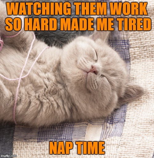 WATCHING THEM WORK SO HARD MADE ME TIRED NAP TIME | made w/ Imgflip meme maker