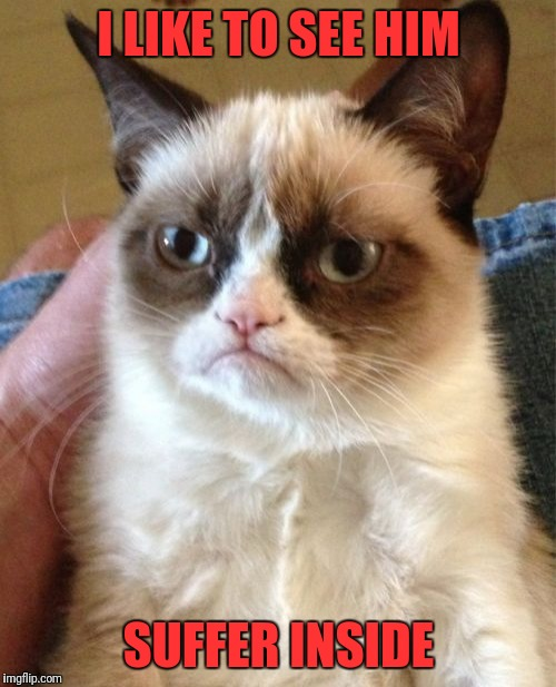 Grumpy Cat Meme | I LIKE TO SEE HIM SUFFER INSIDE | image tagged in memes,grumpy cat | made w/ Imgflip meme maker