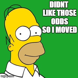 homer | DIDNT LIKE THOSE ODDS SO I MOVED | image tagged in homer | made w/ Imgflip meme maker