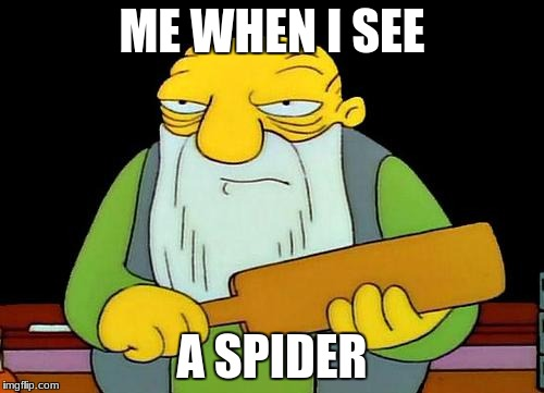 That's a paddlin' Meme | ME WHEN I SEE A SPIDER | image tagged in memes,that's a paddlin' | made w/ Imgflip meme maker