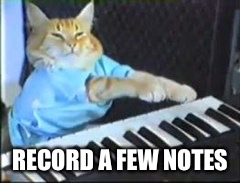 RECORD A FEW NOTES | made w/ Imgflip meme maker