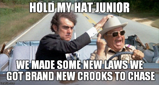 HOLD MY HAT JUNIOR WE MADE SOME NEW LAWS WE GOT BRAND NEW CROOKS TO CHASE | made w/ Imgflip meme maker