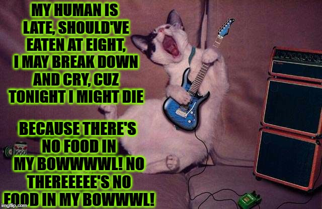 BLUES SINGER CAT | MY HUMAN IS LATE, SHOULD'VE EATEN AT EIGHT, I MAY BREAK DOWN AND CRY, CUZ TONIGHT I MIGHT DIE BECAUSE THERE'S NO FOOD IN MY BOWWWWL! NO THER | image tagged in blues singer cat | made w/ Imgflip meme maker