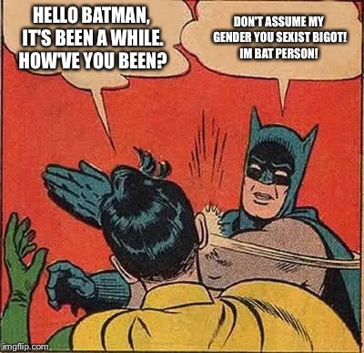 If Batman were a leftist  | HELLO BATMAN, IT'S BEEN A WHILE. HOW'VE YOU BEEN? DON'T ASSUME MY GENDER YOU SEXIST BIGOT! IM BAT PERSON! | image tagged in memes,batman slapping robin | made w/ Imgflip meme maker